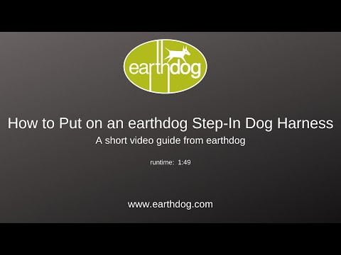 how-to-put-on-an-earthdog-step-in-dog-harness:-a-short-video-guide-from-earthdog