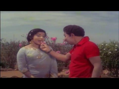 பூ வைத்த | Poo Vaitha | Maattukara Velan | MGR,Jayalalitha | Tamil Movie Song HD