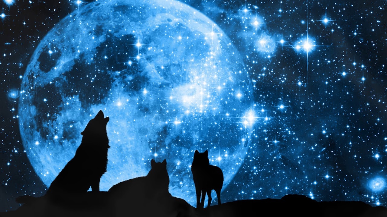 Grandmother Wolf Spirit Calling The Moon Conjuring