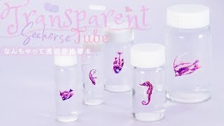 Transparent Seahorse Tube 怪しい魅力♡なんちゃって透明骨格標本