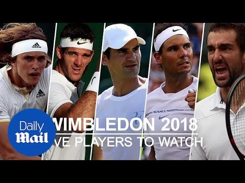 Wimbledon 2018: A loot at the five top contenders to win - Daily Mail