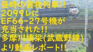 2021/06/10 [JR貨物][貨物列車] 昼時の貨物列車!! 2099レにEF66-27号機が充当された!! 多摩川橋梁(武蔵野線)より動画レポート!!