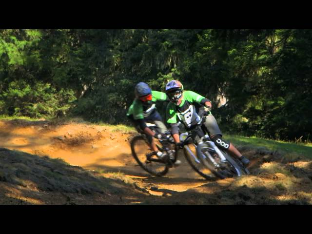 GORILLA Bike - Level 1: Verhalten (4/22) D