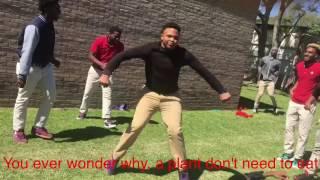 Photosynthesis Rap Dance Song (jigg song)
