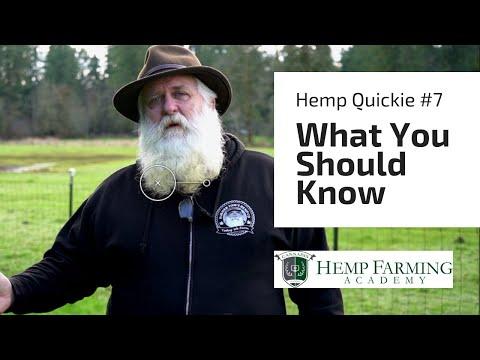 4 things I wish I knew when I started farming hemp – Hemp Farming Quickie #7