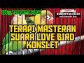 Masteran Suara Love Bird Konslet Mangap  Mp3 - Mp4 Download