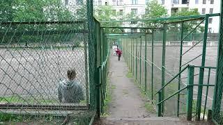 Съёмки социального ролика УКЦ «Собаки-помощники инвалидов» 2