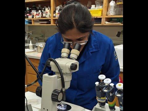 Tour a Vision Research Lab