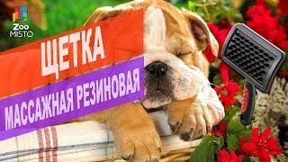 Щетка массажная резиновая для кошек и собак | Обзор щетки массажной резиновой для питомцев