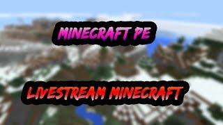 🔴 minecraft pe live    mcpe live lbsg, mineplex pe, inpvp livestream! bedrock mcpe realms