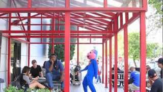 Art Institute of Fort Lauderdale Harlem Shake