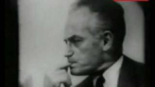 US Democrats - Lyndon Johnson 1964 Video 3