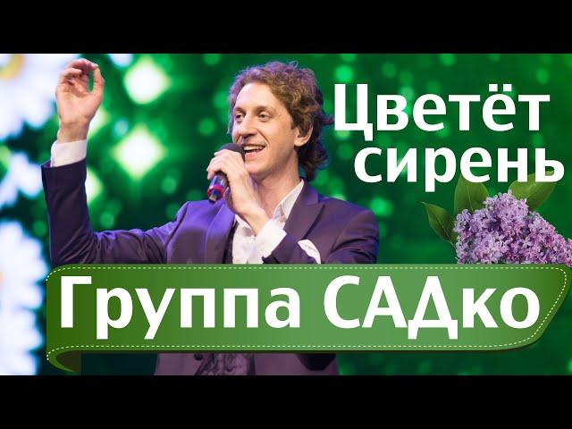 ЦВЕТЁТ СИРЕНЬ - АБАЛДЕННАЯ песня от ГРУППЫ САДко !