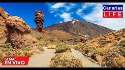 📹🔴 LIVE WEBCAM from Parque Nacional del Teide Tenerife