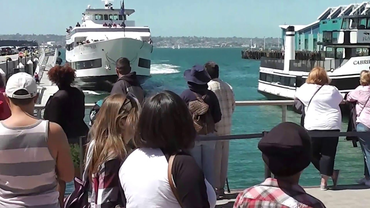 Whale Watching Boat Crashing Into San Diego Dock YouTube - Where do cruise ships dock in san diego