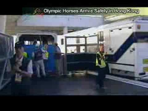 Olympic Equine Athletes enjoy travelling First-Class