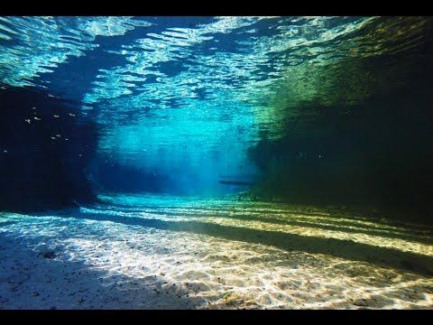 Free Diving - Ginnie Springs
