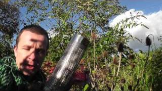 how-to-attract-goldfinches-alex-sally-nyjer-feeder-top-tip-wales-england