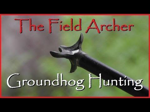 Woodchuck / Groundhog Bow And Crossbow Hunting
