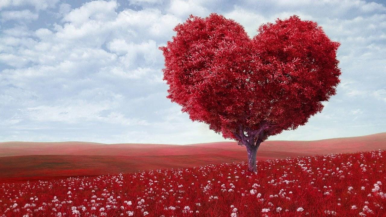 Romantische Musik zum Kuscheln, Küssen Liebesmusik