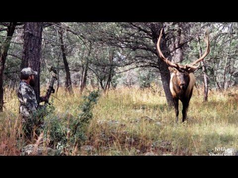 Cull Bull Hunt On The Great Dry Lake Part.1 San Carlos AZ
