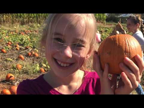 Bishop's Pumkin Farm