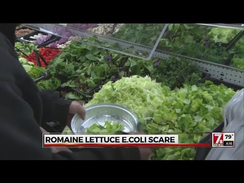 Romaine lettuce E. coli outbreak: What it means and symptoms to look out for