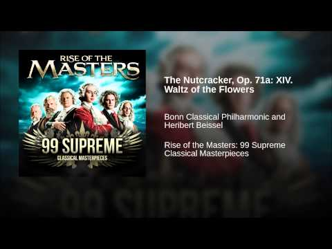 The Nutcracker, Op. 71a: XIV. Waltz of the Flowers