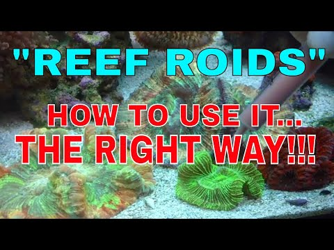 Reef Roids  How To Use It  The Right Way