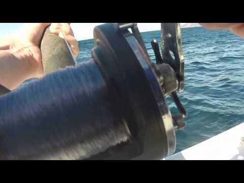 Deep-sea Fishing In Ensenada