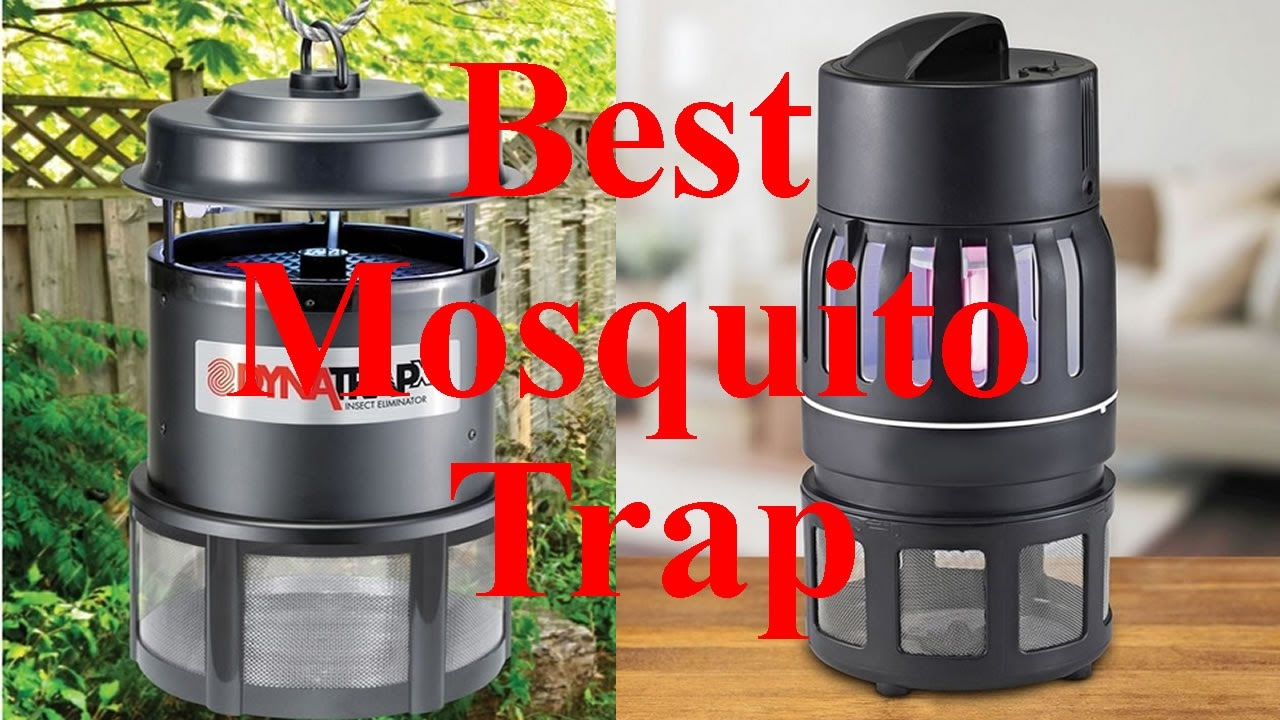 Best Mosquito Trap, Indoor & Outdoor - SUPER Effective ...