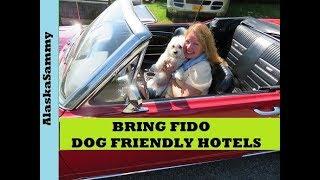 Bring Fido Dog Friendly Hotels, Restaurants, Activities, Events