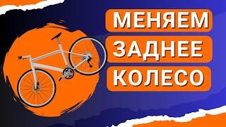 Как снять и поставить заднее колесо на велосипед(Продолжаем цикл наших видео для новичков . Самая распространенная и элементарная операция - снятие (и, конеч..., 2016-08-27T11:29:28.000Z)