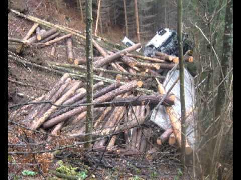 Nehody v lese