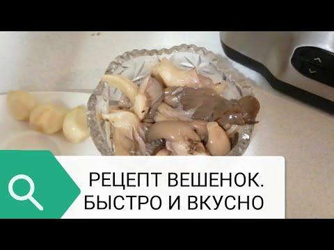Как сделать солёные грибы в домашних условиях быстро и вкусно? Рецепт солёных грибов вешенок