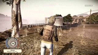 State of Decay - kinds of stealth kills