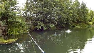 Сколько рыбы в этой речке!!! Хищник на спиннинг(, 2017-09-09T09:15:04.000Z)
