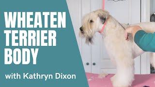 Wheaten Terrier Body with Kathryn Dixon