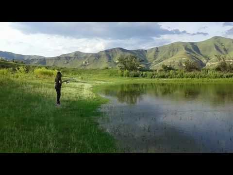 Golden Gate - Fishing at Bergwoning Dam and Campsite located next to Kiara Lodge - Golden Gate