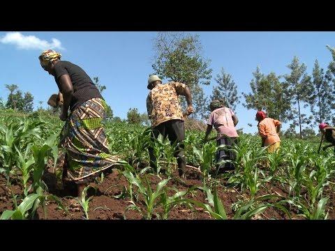 Rwanda: A changing climate