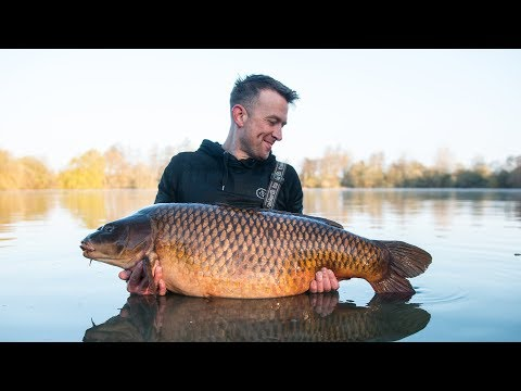 Bluebell Lakes, Kingfisher Lake. Tips, Tactics And A 47lbs Common. On The Beaten Track.