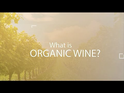 WHAT IS ORGANIC WINE?