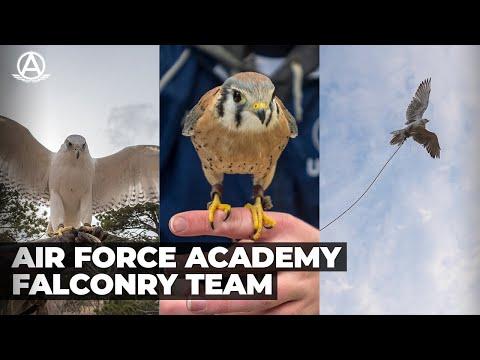 USAFA Falconry