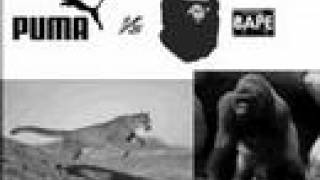 Puma vs Bape