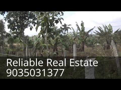 100 acres of land near Gundlupet - Mysore