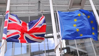 Could There Really be a Second Brexit Referendum?
