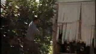 Ночные Снайперы - Бонни и Клаид