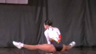 Campionatul national de gimnastica aerobica Deva 2008
