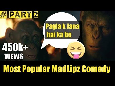 Bandar K Jana (PART 2) - Most Funny Madlipz Comedy    Sabse Jyada Comedy   TikTok Trending