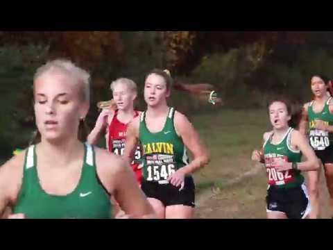 XC State 2018 (Calvin Christian High School)